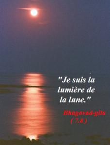 72-la-lune-sur-l-ile-aux-vaches