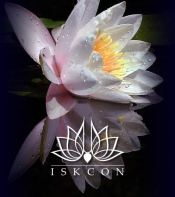 home-lotus-flower