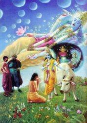 Les-sots-d-nigrent-Krishna