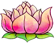 lotus67