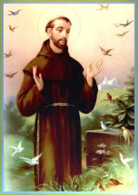 St-Francis-birds-21